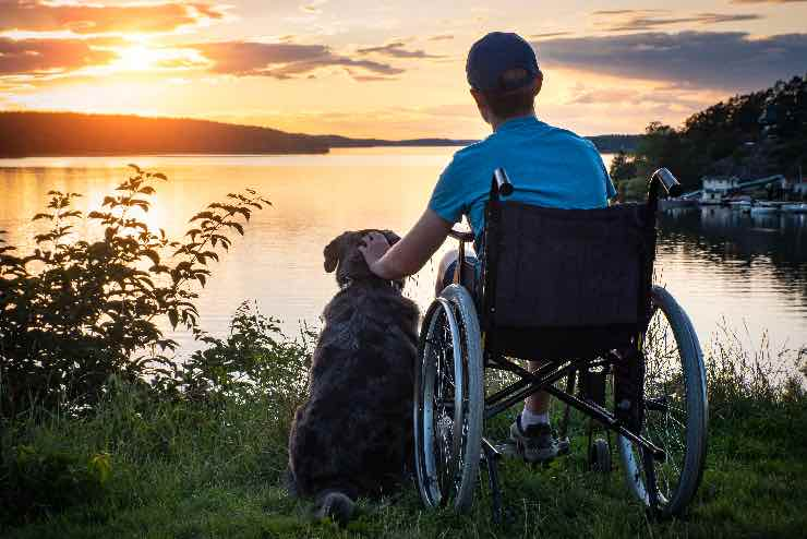 A young man in a wheelchair, patting a dog while looking out across a beautiful bay
