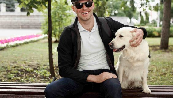 A blind man stroking guide dog, obedient pet. friendship between disabled person and animal