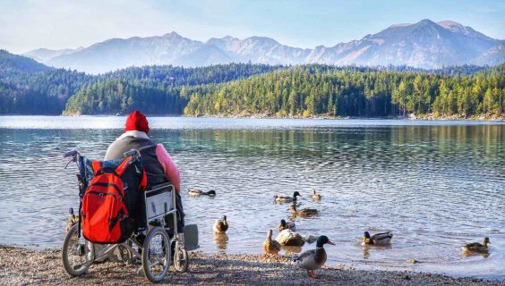 Woman sitting on wheelchair and feeding bread for mallard duck on beautiful scene nature of mountain and lake with forest wood.