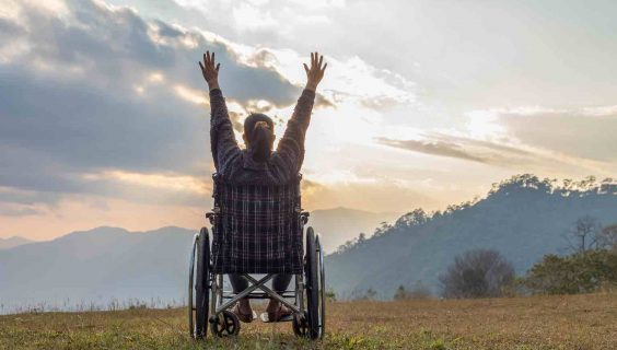 Happy disabled handicapped woman in a wheelchair and stretching hands at sunset. back view,
