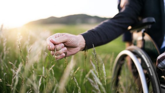 The hand of someone in a wheelchair brushing through grass.